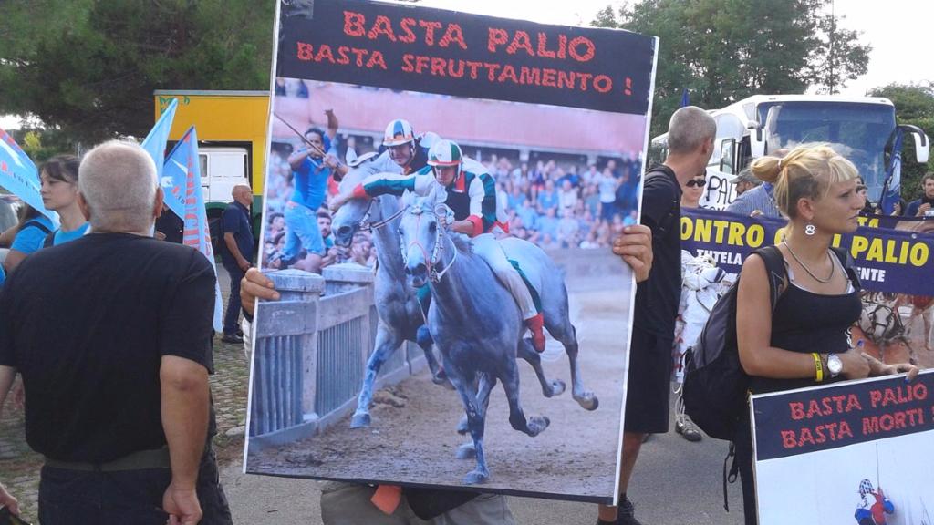 immagini e video 2015 468 - Manifestazione contro il Palio di Siena - 16.08.2015