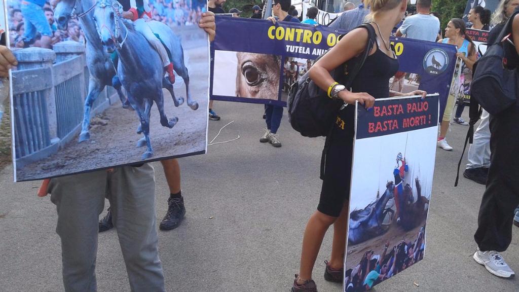immagini e video 2015 469 - Manifestazione contro il Palio di Siena - 16.08.2015
