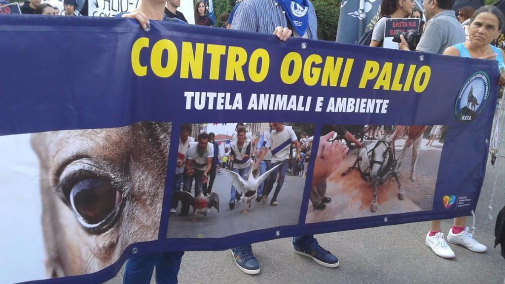immagini e video 2015 470 - Manifestazione contro il Palio di Siena - 16.08.2015