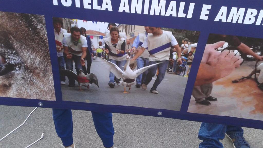 immagini e video 2015 472 - Manifestazione contro il Palio di Siena - 16.08.2015