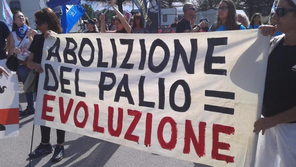 immagini e video 2015 479 - Manifestazione contro il Palio di Siena - 16.08.2015
