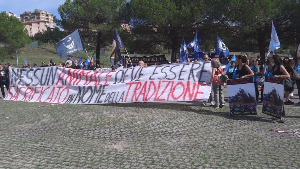 immagini e video 2015 483 - Manifestazione contro il Palio di Siena - 16.08.2015