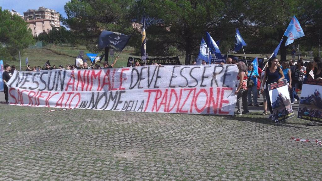 immagini e video 2015 484 - Manifestazione contro il Palio di Siena - 16.08.2015