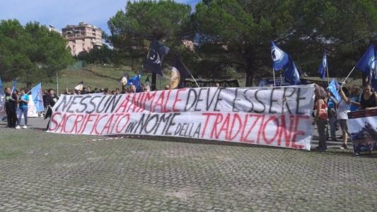 immagini e video 2015 485 1024x576 960x300 - Manifestazione contro il Palio di Siena - 16.08.2015