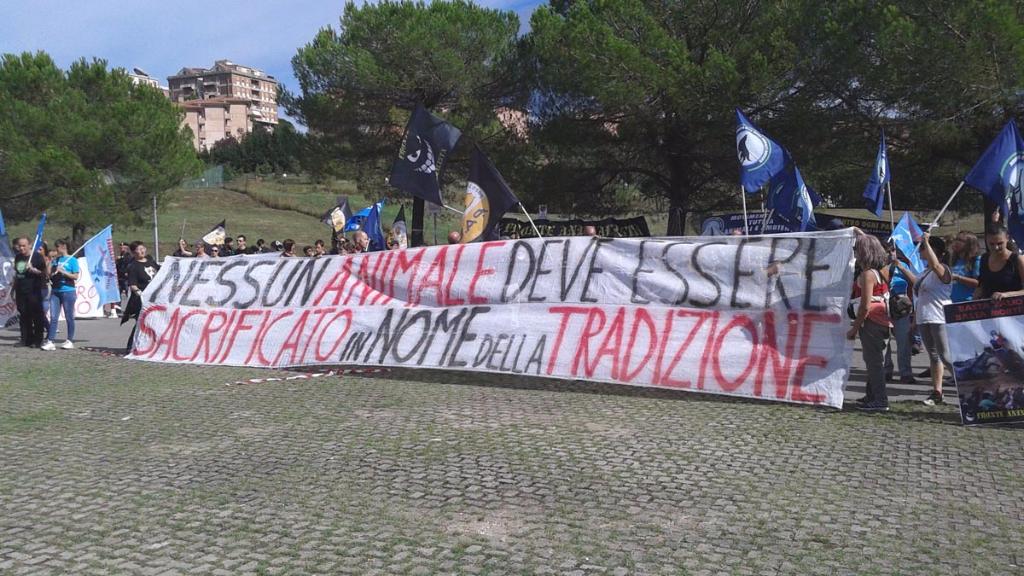 immagini e video 2015 485 - Manifestazione contro il Palio di Siena - 16.08.2015