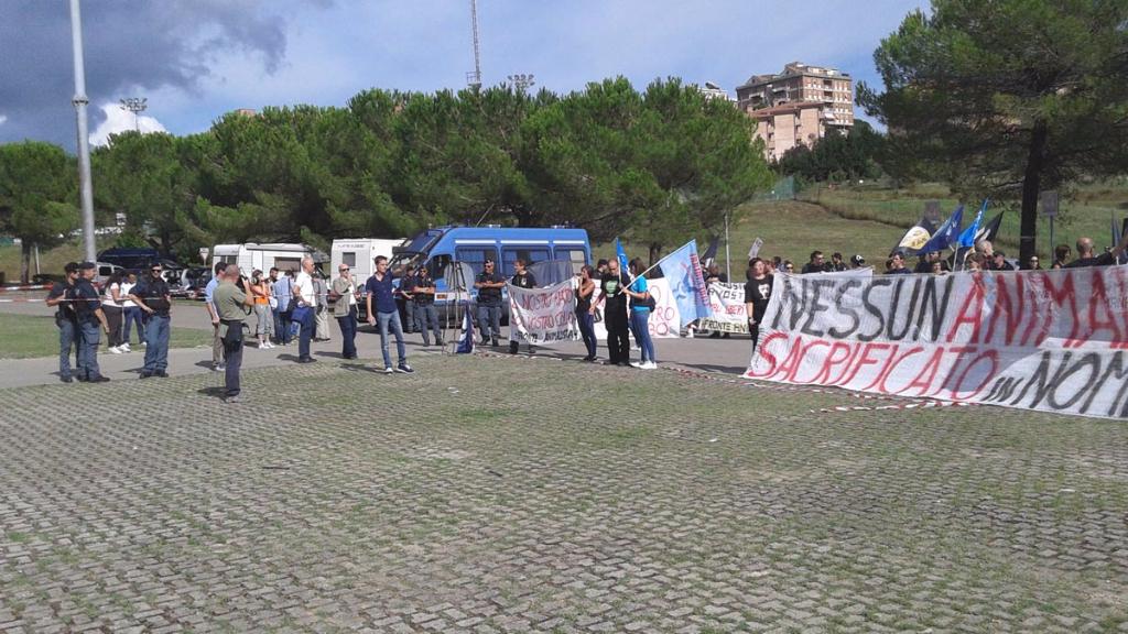 immagini e video 2015 486 - Manifestazione contro il Palio di Siena - 16.08.2015