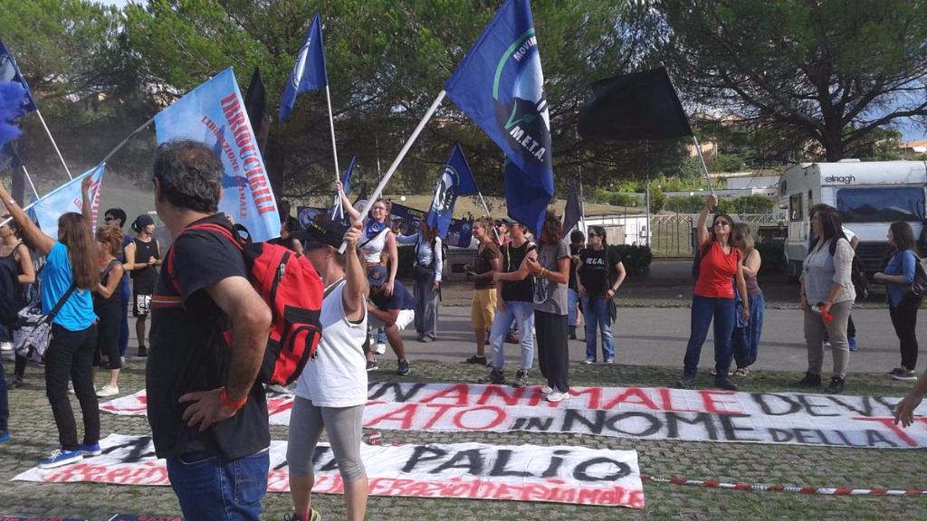 immagini e video 2015 491 - Manifestazione contro il Palio di Siena - 16.08.2015