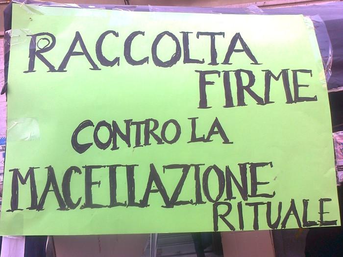 la strage pasquale 2012 20120325 1242366029 - TAVOLO INFORMATIVO SULLA STRAGE PASQUALE DI AGNELLI E CAPRETTI - 24.03.2012 - 2012-