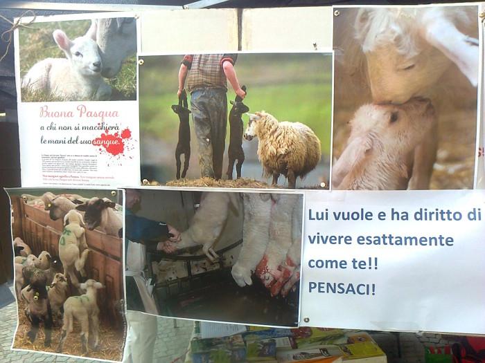 la strage pasquale 2012 20120325 1813367818 - TAVOLO INFORMATIVO SULLA STRAGE PASQUALE DI AGNELLI E CAPRETTI - 24.03.2012