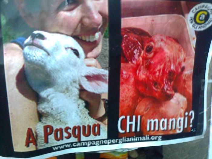 la strage pasquale 2012 20120325 1916177431 - TAVOLO INFORMATIVO SULLA STRAGE PASQUALE DI AGNELLI E CAPRETTI - 24.03.2012