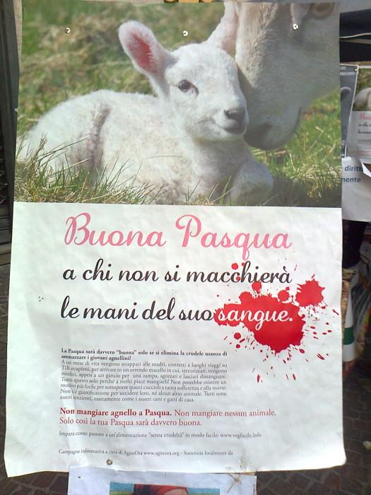 la strage pasquale 2012 20120325 2042115576 - TAVOLO INFORMATIVO SULLA STRAGE PASQUALE DI AGNELLI E CAPRETTI - 24.03.2012