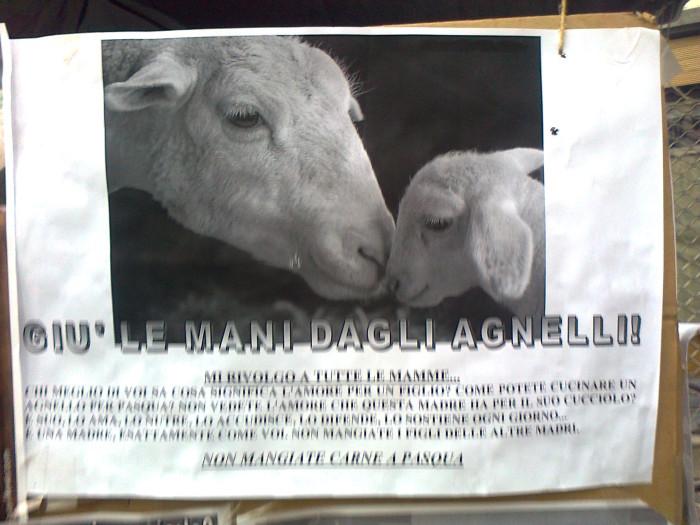 la strage pasquale 2012 20120325 2043448457 - TAVOLO INFORMATIVO SULLA STRAGE PASQUALE DI AGNELLI E CAPRETTI - 24.03.2012