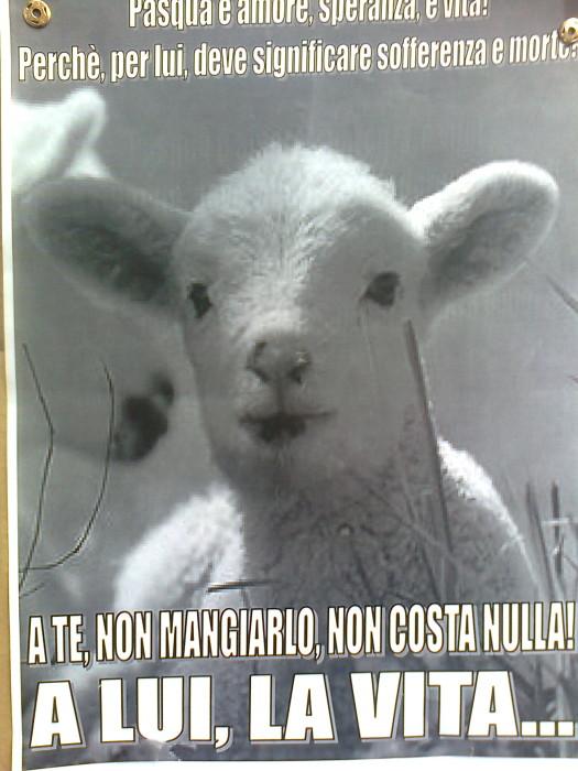 la strage pasquale 2012 20120325 2082374971 - TAVOLO INFORMATIVO SULLA STRAGE PASQUALE DI AGNELLI E CAPRETTI - 24.03.2012