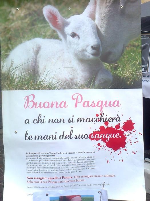 la strage pasquale  20130212 1587022290 - TAVOLO INFORMATIVO SULLA STRAGE PASQUALE DI AGNELLI E CAPRETTI - 24.03.2012