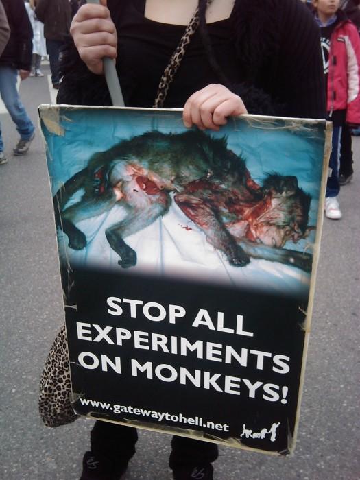 manifestazione contro la vivisezione   milano 5 marzo  20130212 1310627116 - MANIFESTAZIONE CONTRO LA VIVISEZIONE - MILANO 5 marzo 2011