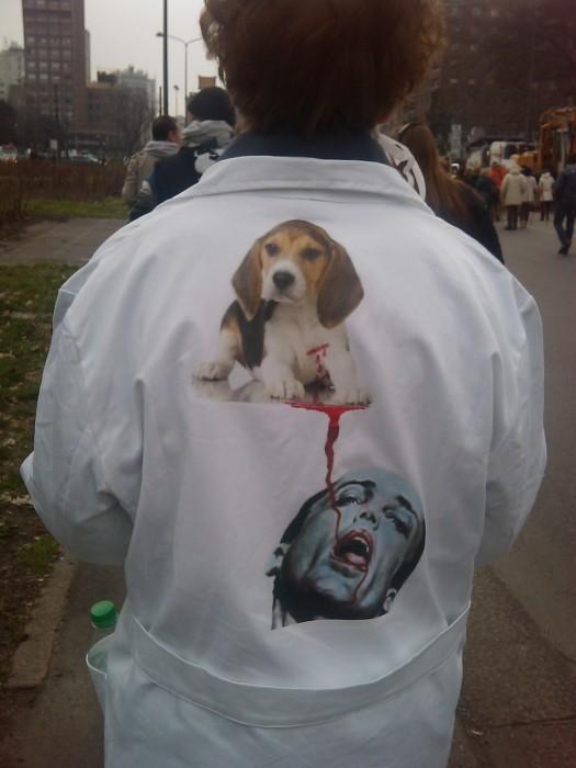 manifestazione contro la vivisezione   milano 5 marzo  20130212 1475768206 - MANIFESTAZIONE CONTRO LA VIVISEZIONE - MILANO 5 marzo 2011