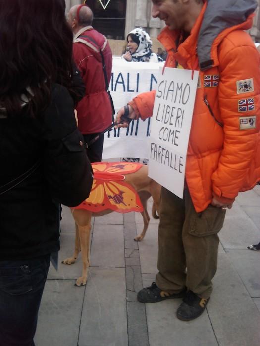 manifestazione contro la vivisezione   milano 5 marzo  20130212 1483499044 - MANIFESTAZIONE CONTRO LA VIVISEZIONE - MILANO 5 marzo 2011