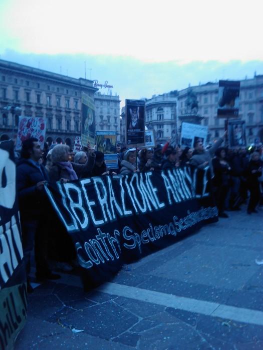 manifestazione contro la vivisezione   milano 5 marzo  20130212 1746998777 - MANIFESTAZIONE CONTRO LA VIVISEZIONE - MILANO 5 marzo 2011