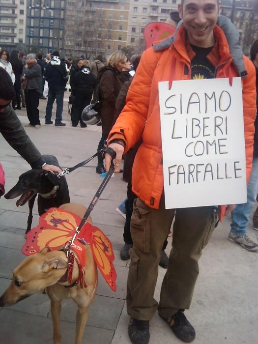 manifestazione contro la vivisezione   milano 5 marzo  20130212 1759906764 - MANIFESTAZIONE CONTRO LA VIVISEZIONE - MILANO 5 marzo 2011