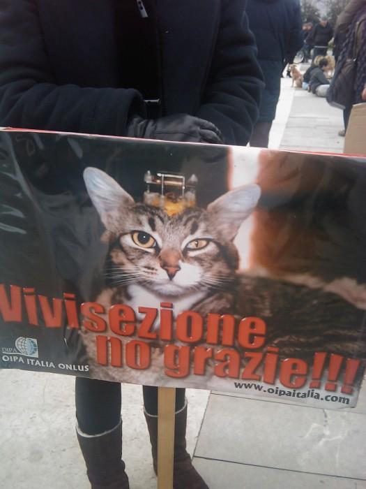 manifestazione contro la vivisezione   milano 5 marzo  20130212 1860895233 - MANIFESTAZIONE CONTRO LA VIVISEZIONE - MILANO 5 marzo 2011