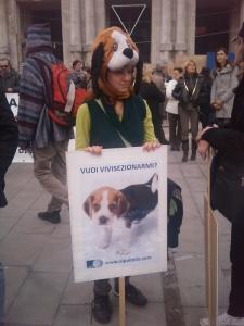 manifestazione contro la vivisezione   milano 5 marzo  20130212 1956916524 960x300 - MANIFESTAZIONE CONTRO LA VIVISEZIONE - MILANO 5 marzo 2011