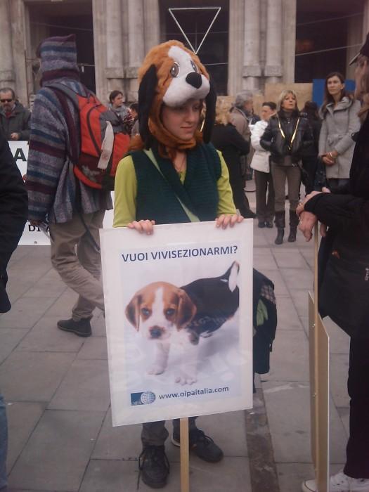 manifestazione contro la vivisezione   milano 5 marzo  20130212 1956916524 - MANIFESTAZIONE CONTRO LA VIVISEZIONE - MILANO 5 marzo 2011