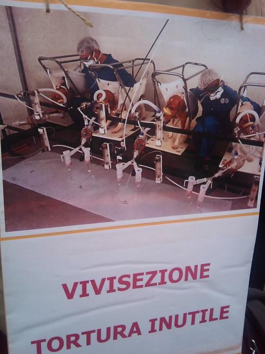 manifestazione contro la vivisezione   milano 5 marzo  20130212 1963187416 - MANIFESTAZIONE CONTRO LA VIVISEZIONE - MILANO 5 marzo 2011