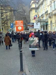 manifestazione contro lo sfruttamento degli anim 20130212 1514394956 960x300 - Bolzano 04.02.2012 manifestazione contro lo sfruttamento degli animali