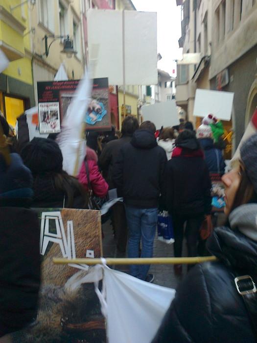 manifestazione contro lo sfruttamento degli animali 20120205 1171513199 - Bolzano 04.02.2012 manifestazione contro lo sfruttamento degli animali - 2012-