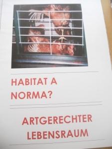 manifestazione contro lo sfruttamento degli animali 20120205 1197152545 960x300 - Bolzano 04.02.2012 manifestazione contro lo sfruttamento degli animali