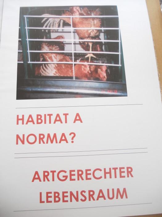 manifestazione contro lo sfruttamento degli animali 20120205 1197152545 - Bolzano 04.02.2012 manifestazione contro lo sfruttamento degli animali - 2012-