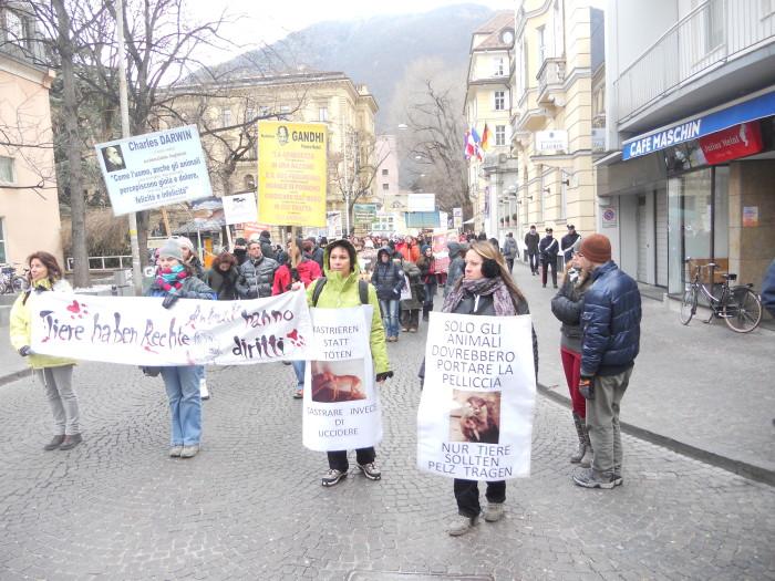 manifestazione contro lo sfruttamento degli animali 20120205 1314267854 - Bolzano 04.02.2012 manifestazione contro lo sfruttamento degli animali - 2012-