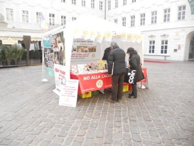manifestazione contro lo sfruttamento degli animali 20120205 1510936534 960x300 - Bolzano 04.02.2012 manifestazione contro lo sfruttamento degli animali