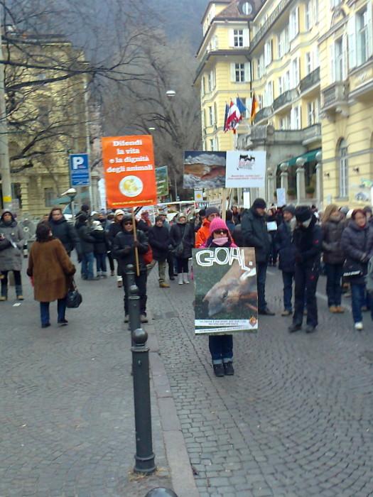 manifestazione contro lo sfruttamento degli animali 20120205 1587685402 - Bolzano 04.02.2012 manifestazione contro lo sfruttamento degli animali - 2012-