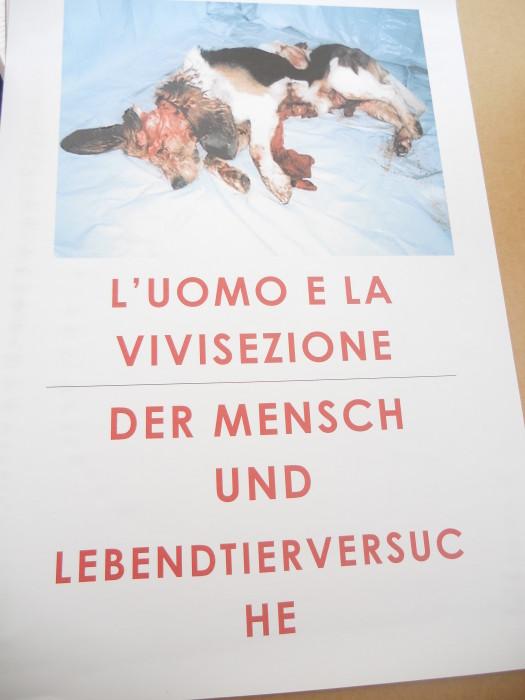 manifestazione contro lo sfruttamento degli animali 20120205 1596308154 - Bolzano 04.02.2012 manifestazione contro lo sfruttamento degli animali