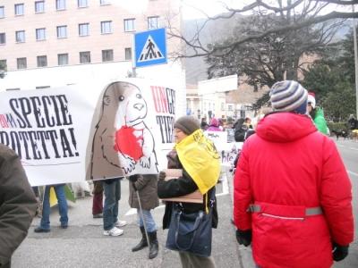 manifestazione contro lo sfruttamento degli animali 20120205 1597353343 960x300 - Bolzano 04.02.2012 manifestazione contro lo sfruttamento degli animali
