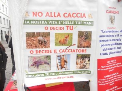 manifestazione contro lo sfruttamento degli animali 20120205 1741176086 960x300 - Bolzano 04.02.2012 manifestazione contro lo sfruttamento degli animali