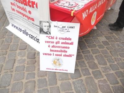 manifestazione contro lo sfruttamento degli animali 20120205 1792352601 960x300 - Bolzano 04.02.2012 manifestazione contro lo sfruttamento degli animali
