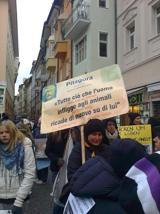 manifestazione contro lo sfruttamento degli animali 20120205 1801474839 - Bolzano 04.02.2012 manifestazione contro lo sfruttamento degli animali