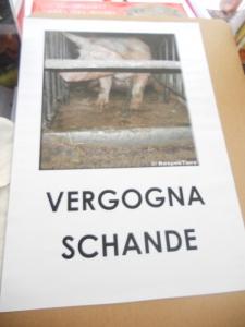 manifestazione contro lo sfruttamento degli animali 20120205 2004534988 960x300 - Bolzano 04.02.2012 manifestazione contro lo sfruttamento degli animali