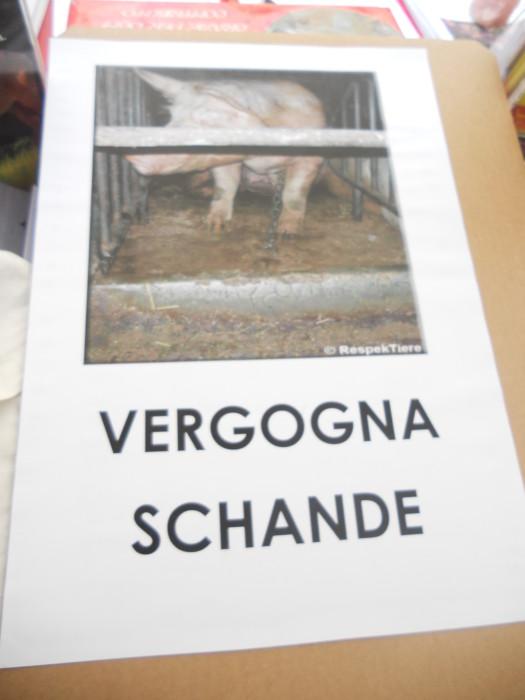 manifestazione contro lo sfruttamento degli animali 20120205 2004534988 - Bolzano 04.02.2012 manifestazione contro lo sfruttamento degli animali - 2012-