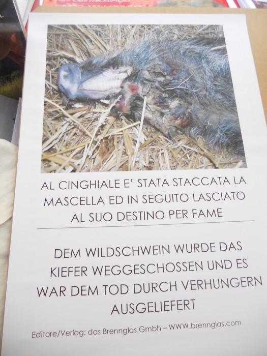 manifestazione contro lo sfruttamento degli animali 20120205 2009281607 - Bolzano 04.02.2012 manifestazione contro lo sfruttamento degli animali - 2012-