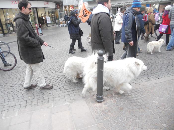 manifestazione contro lo sfruttamento degli animali 20120205 2046726157 - Bolzano 04.02.2012 manifestazione contro lo sfruttamento degli animali