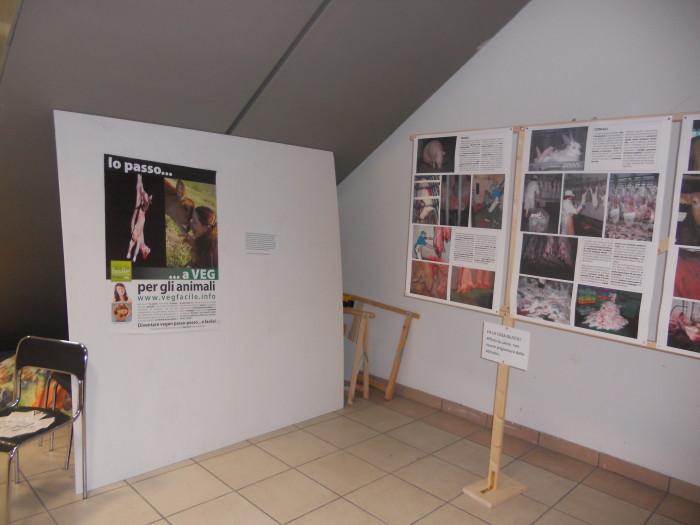 mostra animalista sui macelli 20111101 1049263455 - FA' LA COSA GIUSTA 2011 - MOSTRA ANIMALISTA