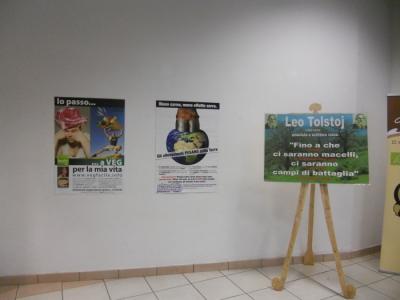 mostra animalista sui macelli 20111101 1392903027 960x300 - FA' LA COSA GIUSTA 2011 - MOSTRA ANIMALISTA