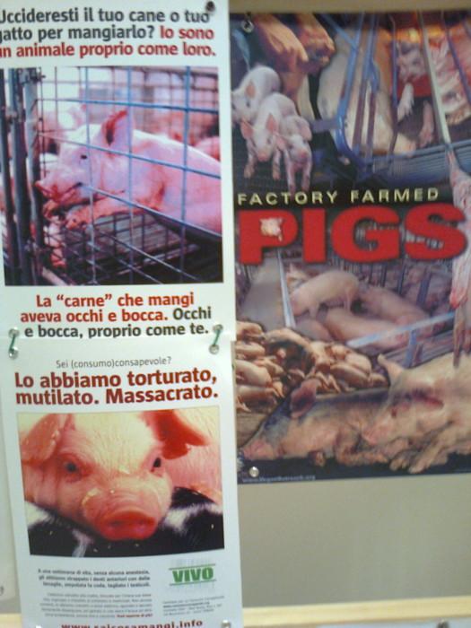 mostra animalista sui macelli 20111101 1579631903 - FA' LA COSA GIUSTA 2011 - MOSTRA ANIMALISTA