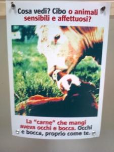 mostra animalista sui macelli 20111101 1652867241 960x300 - FA' LA COSA GIUSTA 2011 - MOSTRA ANIMALISTA