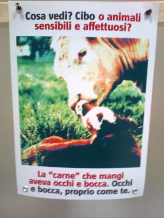 mostra animalista sui macelli 20111101 1652867241 - FA' LA COSA GIUSTA 2011 - MOSTRA ANIMALISTA