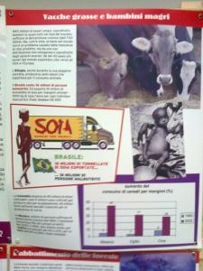 mostra animalista sui macelli 20111101 1696438060 960x300 - FA' LA COSA GIUSTA 2011 - MOSTRA ANIMALISTA