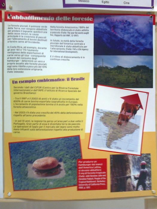 mostra animalista sui macelli 20111101 1769063499 - FA' LA COSA GIUSTA 2011 - MOSTRA ANIMALISTA